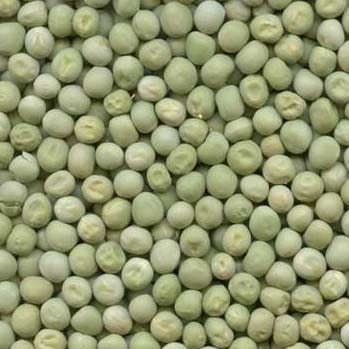 Brokers in Pulses and other Agri Commodities - Indentors in